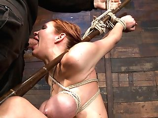 Massive Tits, A Category Five Suspension & Skull Fucking.  Brutal Tying, Devastating Orgasms.  Art - Hog Tied